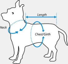 MEASURING YOUR DOG FOR A COLLAR