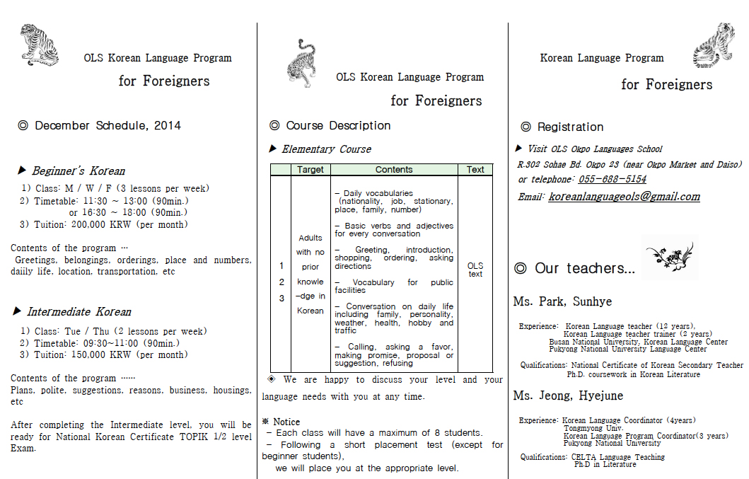 Korean language classes for adults